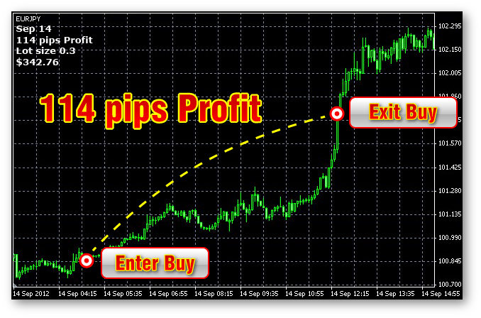 Forex profit hunter